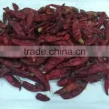 Dried Red Chili/Dried Red Long Chili/Cheap Long Chili/Hot Red Chili Shingri