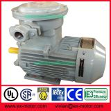 Nanyang explosion proof electric motor with ATEX certificate