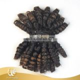 Top quality double drawn bulk virgin hair ombre funmi hair beyonce cury