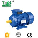 Y2 series AC 3 phase three phase asynchronous electric motors china