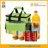 Insulation Large Ice Pack Breast Milk Storage Thermal Waterproof Lunch Take-Away Coke Cooler Bag