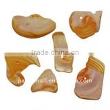Sea Shell Beads, Dyed, Orange, about 10~23x9~14x1~10mm, hole: 2mm, about 1250pcs/500g(BSHE-S010-6)