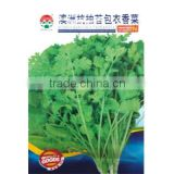 High Quality Caraway Seeds Coriander Seeds For Growing-Bolting Resistance Coated Caraway Seeds