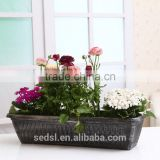we looking for distributors,PP Plastic Type and Not Coated Finishing painted flower pot long flowerpots