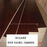 melamine gule 18mm black film faced plywood