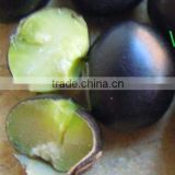 organic black bean(yellow&green kernel)