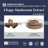 pure natural extract 30% chaga polysaccharide