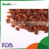 iran dried fruit red raisin famous fruit dry fruit