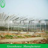 galvanized steel frame greenhouse