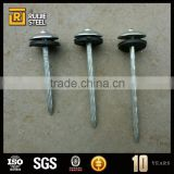 nails for construction/Galvanized iron Nails,umbrella head roofing nails                                                                         Quality Choice