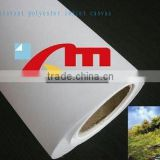 260 gsm Polyester Inkjet Printing Canvas