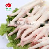 Halal Certified Processed Frozen Chicken Feet