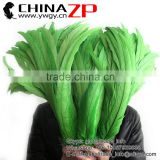 Leading Supplier CHINAZP Bulk Sale Cheap Colored Lime Green Chicken Fully Dyed Roosters Feathers