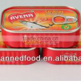 canned sardine from morocco in oil