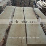Kiln Dried Latvian White Birch unedged lumber