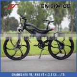 2015 special original design electric mountain bike 250W with CE SGS EN15194                                                                         Quality Choice