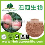 Instant Powder Drink Fruit Flavoured Concentrate Peach Powder