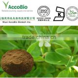 Promotion pure Natural Fenugreek Extract 4-Hydroxyisoleucine 98% ( 4-OH-Ile )