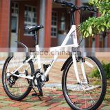 AiBIKE - BIG DOLPHIN - 24 inch 21 speed city bicycle