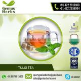 Organic Tulsi Tea for Increasing Body Immunity