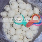 Jinxiang pure white garlic, fresh garlic hot sale garlic sales,garlic for new market,garlic