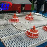Automatic Chicken brooder cage poultry egg layer chicken house equiped drinker on hot sale