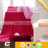 Warm And Cozy Super Soft Fabrics Double Layer Blankets Ded Sheet For Winter