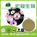 Best selling high purity CAS.:70831-56-0 Cichoric Acid 2% Echinacea Extract Powder