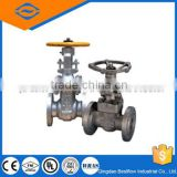Gear operated steel double flange gate valve