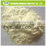 AD Garlic Powder, Grade A from Factory