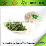 BNP Supple High Quality L-carnitine + Green Tea Capsules from Qingdao BNP - Slimming Capsule