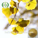 Natural Ginkgo Biloba Extract Ginkgo Biloba Extract Supplier