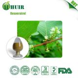 High quality: Acetyl-resveratrol 98% Polygonum Cuspidatum Extract by huir