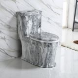 2018 ceramic luxury fantasit new color ceramic bathroom floor mounted one piece toilet bowl