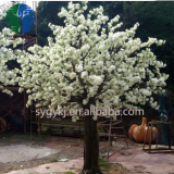 China factory hot sale white cherry blossom tree for home decoration