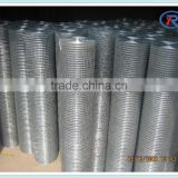 "Hot sale 3/4""x3/4""welded wire mesh roll/panel for fence"