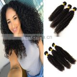 2017 hot sale kinky curly indian hair salon virgin brazilian hair naked black women