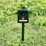 Solar Ultrasonic PIR Motion Sensor Bird Repeller