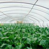 LDPE uv- protection plastic greenhouse films                                                                         Quality Choice