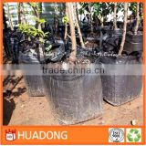 agriculture use pp grow bags, pp grow bags
