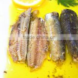 125g Canned Sardine in Oil(WW-125) Wholesale best fresh sardine material manufacturer price 125g 155g 425g
