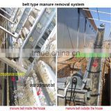 poultry manure belts conveyor system for chicken farm cages