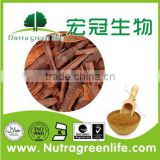 High Quality Cinnamon Bark Extract/Cinnamon Powder/Ceylon Cinnamon Powder