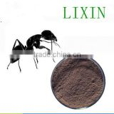 best selling product healthy sex medicine for men OEM factory natural black ants powder sex power capsule