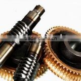 More Than 20 years Working Expensive Conveyor Worm Gear and Worm Shaft Factory Price for Package Factory Top Quality