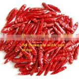 Dry pepper Exporters