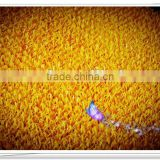 gold wash plant artificial turf