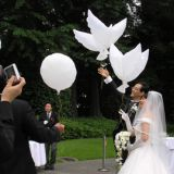 Pigeon balloon wedding decoration balloon white dove foil balloon helium balloon hotsale