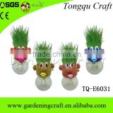 Hot sale gift and premium creative grass growing head toy for promotion