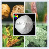CAS NO.133-06-2 Best prices 95%TC 50%WP 75%WP 80%WDG 48%SC captan fungicide
